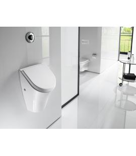 Czy pisuar sprawdzi się w domowej toalecie?